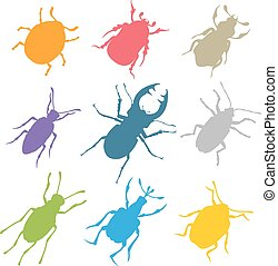 Colorful insects vector biology collection - Colorful...