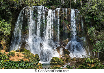Waterfall in a lush rainforest. Beautiful waterfalls or...