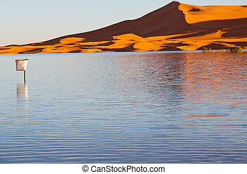 sunshine in the lake yellow  desert of morocco