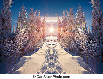Horizontally flipped winter landscape in the mountains....