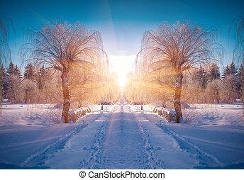 horizontalmente, Giró, invierno, paisaje, en, el,...