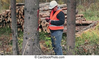 Forest inspector using tablet PC in forest