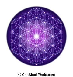 Bright Flower of Life With Stars - Bright Flower of Life...
