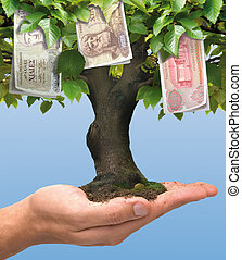 Money tree - Greek crisis - drachma