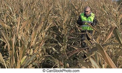 Busy farmer using tablet PC on cold corn field