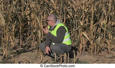 Stressful farmer on cold corn field