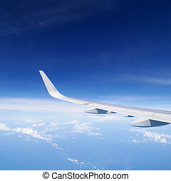 Wing of the airplane (1)