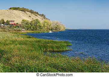 lake with reeds - View of the lake with reeds