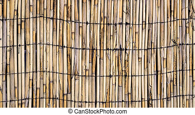 Texture of wall of bound bamboo