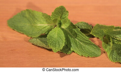 Green mint plant on a wooden table
