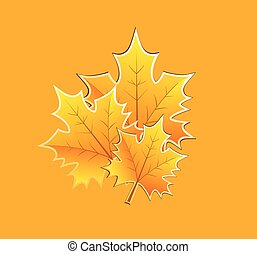 Fall Leaves - vector fall leaves