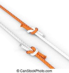 3d rope with knots on white background