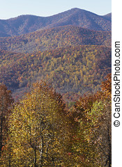 Appalachian Moutains Palette of Fall Color - Scenic view of...
