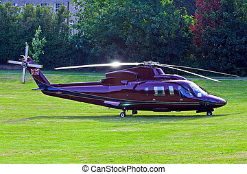 Helicopter - Purple helicopter craft parked at grass area