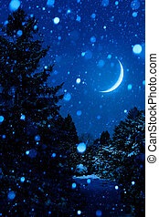 Christmas Tree at Night Outdoors with Moon