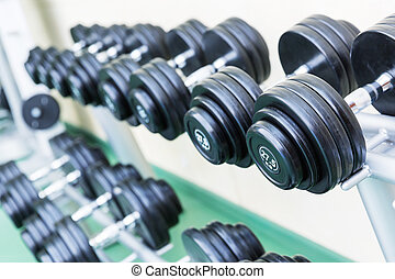 Set of dumb-bells - Dumb-bells on the stand in the gym