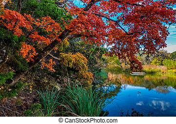 Lost Maples State Park, Texas - Beautiful Red, Yellow,...