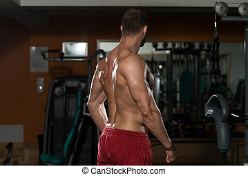 Physically Man Showing His Well Trained Back - Man In Gym...