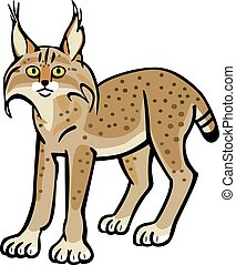 Lynx - vector illustration of a lynx with yellow eyes