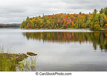 Fall Color on a Lake in Algonquin Provincial Park, Ontario,...