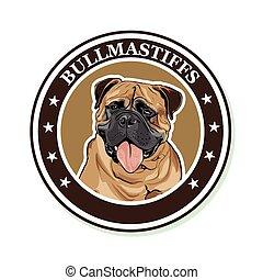 Bullmastiff - Vector portrait of the dog breed Bullmastiff