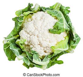 fresh ripe cauliflower isolated on white background