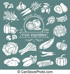 Set hand draw decorative isolated vegetables Vector...