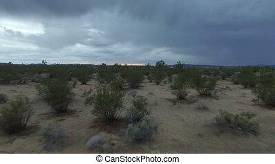 Video of desert