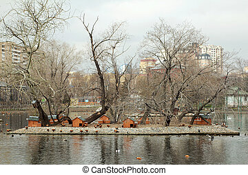 The habitat of ducks - The habitat of ducks orange color at...