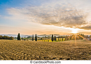 The campaign of Lucignano - The beautiful countryside of...