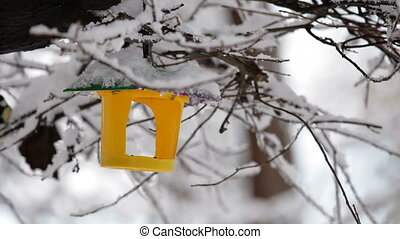 Bird Feeder Hanging On Snowy Tree Branch - Bright yellow...