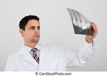 Male Dentist Examining Dental Xray