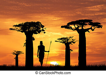 baobab silhouette at sunset - illustration of baobab...