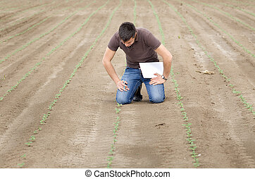Agronomist with sprouts - Agronmist kneeling over young...