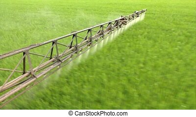 the sprayer sprays young wheat on the field