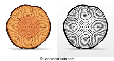 Tree rings and saw cut tree trunk - Vector illustration of...