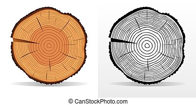 EPS Vector of Tree rings and saw cut tree trunk. - Vector tree ...