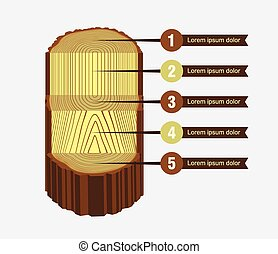 Tree Log Sawing Scheme - Tree log sawing scheme vector...