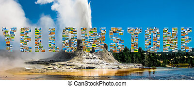 Yellowstone Castle Geyser - Yellowstone pictures collage of...