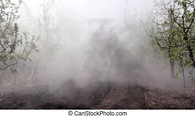 Sprayer sprays cherry orchard - Tractor sprayer sprays...