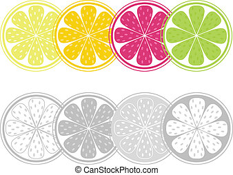 Citrus fruit slices in retro style isolated on white