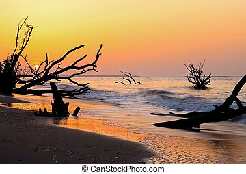 South Carolina Boneyard Beach - Sunrise on Botany Bay Edisto...