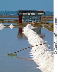 Salt field - Heap of sea salt in a field prepared for...