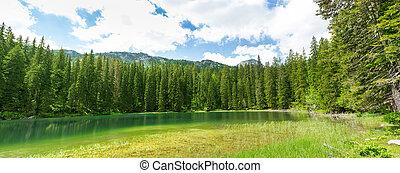 Crno Jezero, Montenegro - Small mountain lake, Montenegro....