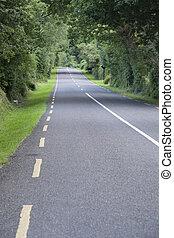 Rural Road, Killarney; County; Kerry; Ireland