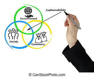 Presentation of diagram of sustainability