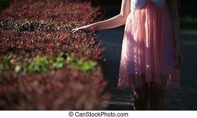Young Woman in  Pink Summer Dress Walking along the Garden Alley Touching Cut Bushes with a Hand