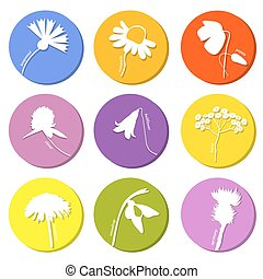 Wild flowers icons set. Vector illustration in eps8 format.