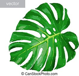illustration vecteur de feuille tropicale plante monstera leaf usine csp6781152. Black Bedroom Furniture Sets. Home Design Ideas
