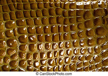 crocodile skin texture, background, green marsh pattern....